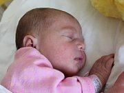 Rodičům Denise Pollákové a Janovi Billymu z Jiřetína pod Jedlovou se v neděli 30. července v 10:28 hodin narodila dcera Marie Polláková. Měřila 46 cm a vážila 2,6 kg.