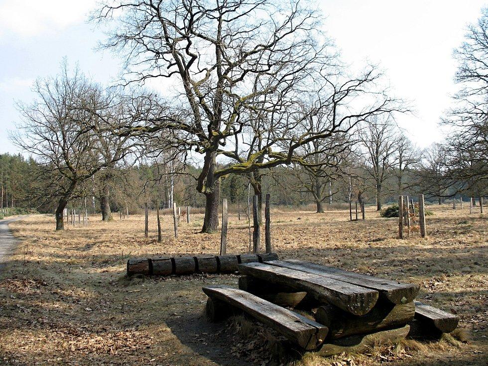 V těchto místech bývala v Ralsku vesnice Strážov.