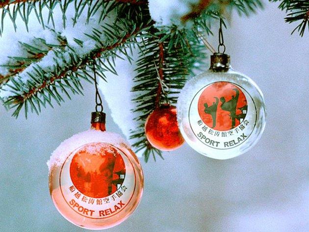 Krásné Vánoce přejí členové karate klubu Sport Relax.
