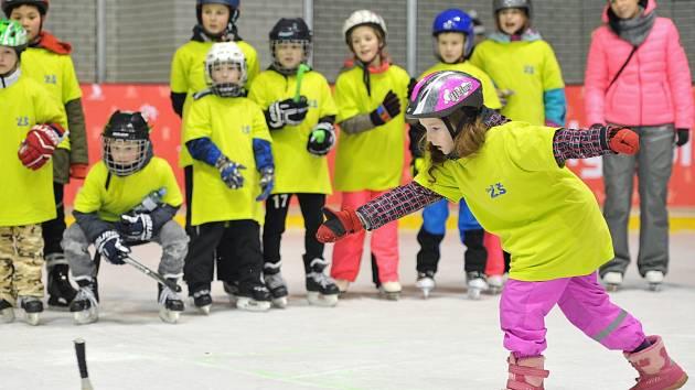 Hokejové dovednosti, krasobruslení, metaná a rychlobruslení, to byly soutěže Zimní olympiády dětí a mládeže, která se pro žáky I. stupně českolipských základních škol konala na zimním stadionu.
