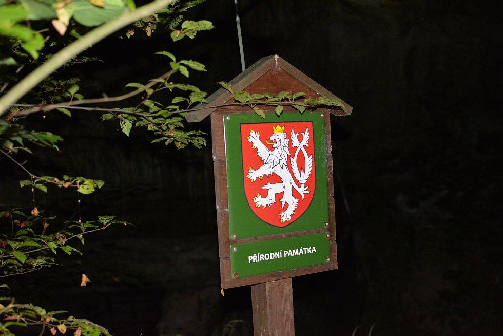 Jedinečnou šanci poznat létající savce měli lidé u dávného pískovcového lomu ve Skalici u České Lípy.