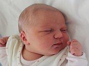 Rodičům Pavlíně Ulrychové a Zdeňku Součkovi z Nového Boru se v pondělí 12. března ve 12:16 hodin narodila dcera Sofya Součková. Měřila 49 cm a vážila 3,34 kg.