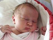 Rodičům Petře a Liborovi Královým z České Lípy se v pátek 2. února narodila dcera Viktorie Králová. Měřila 49 cm a vážila 3,07 kg. Doma se na ni těší sestřička Amelie.