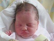 Rodičům Christině Krebsové a Pavlu Pytlíkovi ze Cvikova se v pátek 4. listopadu v 6:08 hodin narodila dcera Natálie Pytlíková. Měřila 48 cm a vážila 3 kg.