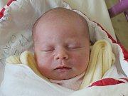 Rodičům Sandře Jančarové a Dominiku Kubelkovi z České Lípy se v neděli 18. února v 15:09 hodin narodila dcera Dominika Kubelková. Měřila 49 cm a vážila 3,15 kg.