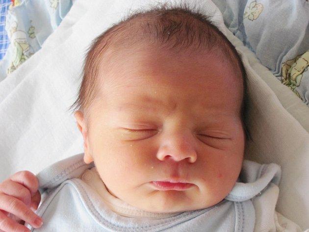 Mamince Nikol Sigmundové z České Lípy se 21. listopadu v 5:01 hodin narodil syn Patrik Šárovec. Měřil 52 cm a vážil 3,43 kg.