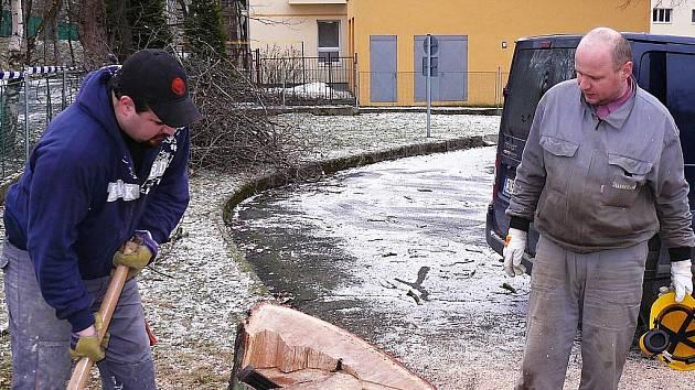 Sekerou a pilou likvidoval Jan Dvořák s dalšími dvěma muži o víkendu strom, který nešťastně spadl přímo do prostor dětského dopravního hřiště v České Lípě.