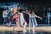 Divadlo Continuo, špičkový, mezinárodně uznávaný soubor zabývající se tanečním a fyzickým divadlem je dnes již stálicí na scéně alternativního divadla a nejen toho českého.