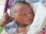 Rodičům Dagmaře a Davidovi Wildmanovým ze Skalice u České Lípy se v sobotu 20. ledna v 16:31 hodin narodil syn Adam Wildman. Měřil 50 cm a vážil 3,53 kg.
