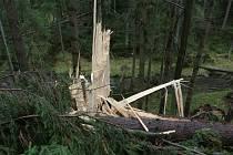 Hasiče v kraji zaměstnal silný vítr.