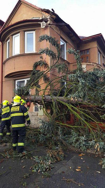 Strom se zřítil na plot jednoho z rodinných domů v Mimoni.