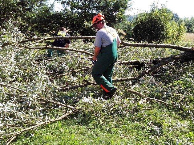 Hasiči v Zákupech měli ve středu plné ruce práce. Noční bouřka tu utrhla střechu u restaurace na místním koupališti a poslala k zemi tři stromy.