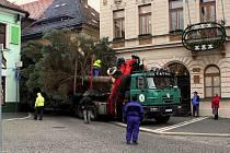 Na náměstí T. G. Masaryka v České Lípě je již vánoční strom.