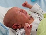 Rodičům Petře a Václavu Kučerovým z České Lípy se v sobotu 14. dubna v 5:59 hodin narodil syn Ondřej Kučera. Měřil 47 cm a vážil 2,80 kg.