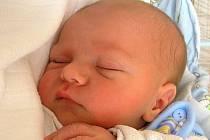 Mamince Evě Vanese Hanusové z České Kamenice se 16. května v 8:55 hodin narodil syn Samuel Hanus. Měřil 49 cm a vážil 3,30 kg.