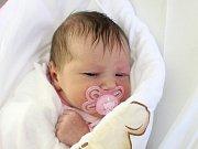 Rodičům Ivaně a Jaroslavovi Steklým z Kravař se ve středu 7. listopadu ve 23:32 hodin narodila dcera Thea Steklá. Měřila 49 cm a vážila 3,28 kg.