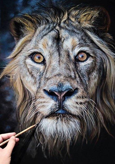 Aukce obrazu lva, namalovaného pastelovými barvami na dřevo, vynesla 33000korun.