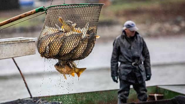 Ilustrační foto: rybář