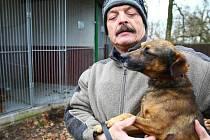 Týraný byl malý psík, kterého drží Jan Vávra, majitel dobranovského psího útulku, v náručí