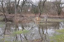 Ve Stvolínkách byl na několik hodin vyhlášen třetí stupeň povodňové aktivity.