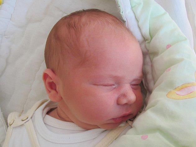 Rodičům Monice Koubové a Davidu Zemančíkovi z Horní Libchavy se ve středu 28. září v 17:06 hodin narodil syn David Zemančík. Měřil 53 cm a vážil 3,86 kg.