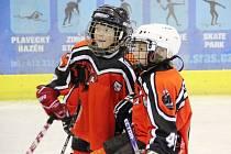 Spokojenost malých hokejistů byla na místě.