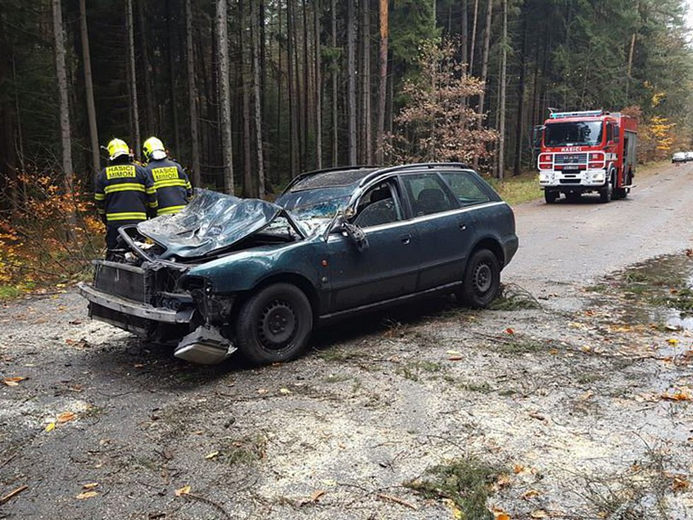 Silnici z Ralska na Mnichovo Hradiště zablokoval během nedělního dopoledne už po několikáté spadlý strom. Ráno do jednoho narazilo auto. V Mimoni silný vítr strhl solární panely.