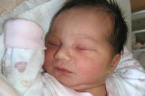 Mamince Blance Hodinkové z České Lípy se 13. dubna v 10:53 hodin narodila dcera Alžběta Hodinková. Měřila 47 cm a vážila 2,98 kg.