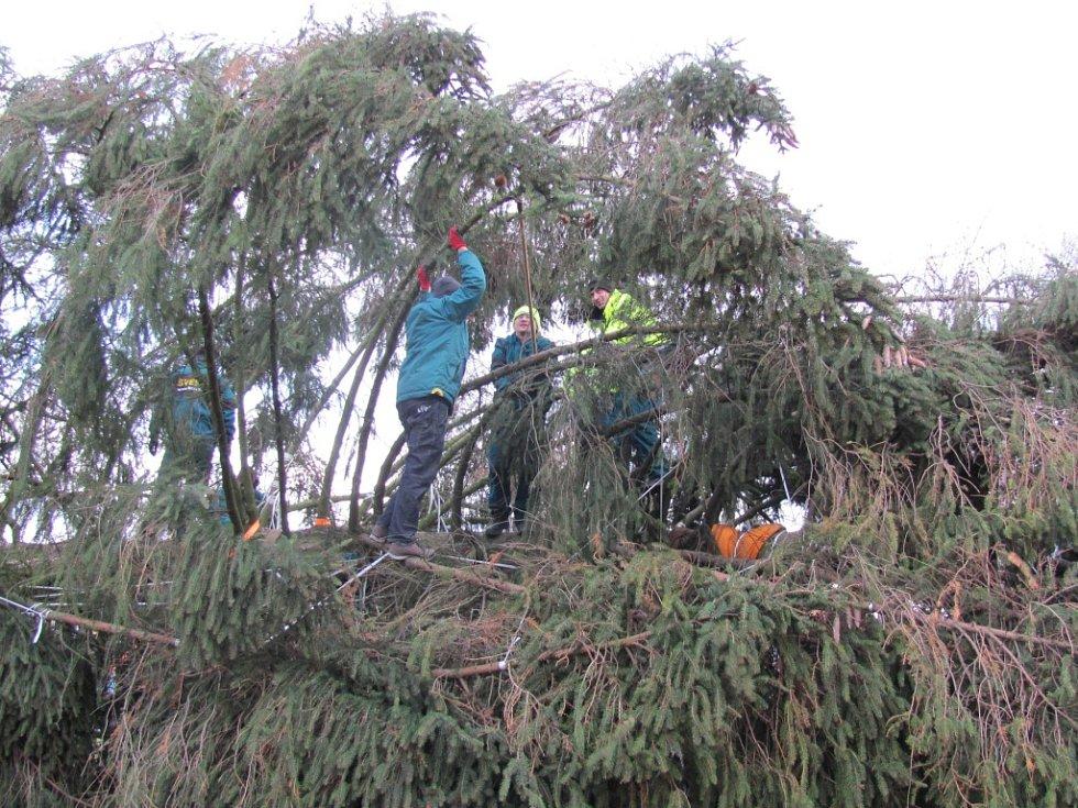 Vázání stromu zabralo dvě hodiny.
