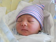 Rodičům Renatě Stankovičové a Alexandru Dankovi z Varnsdorfu se ve čtvrtek 5. dubna ve 4:45 hodin narodil syn Alex Stankovič. Měřil 50 cm a vážil 3,34 kg.