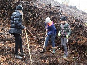 Děti si ve Skalici zasadily alej