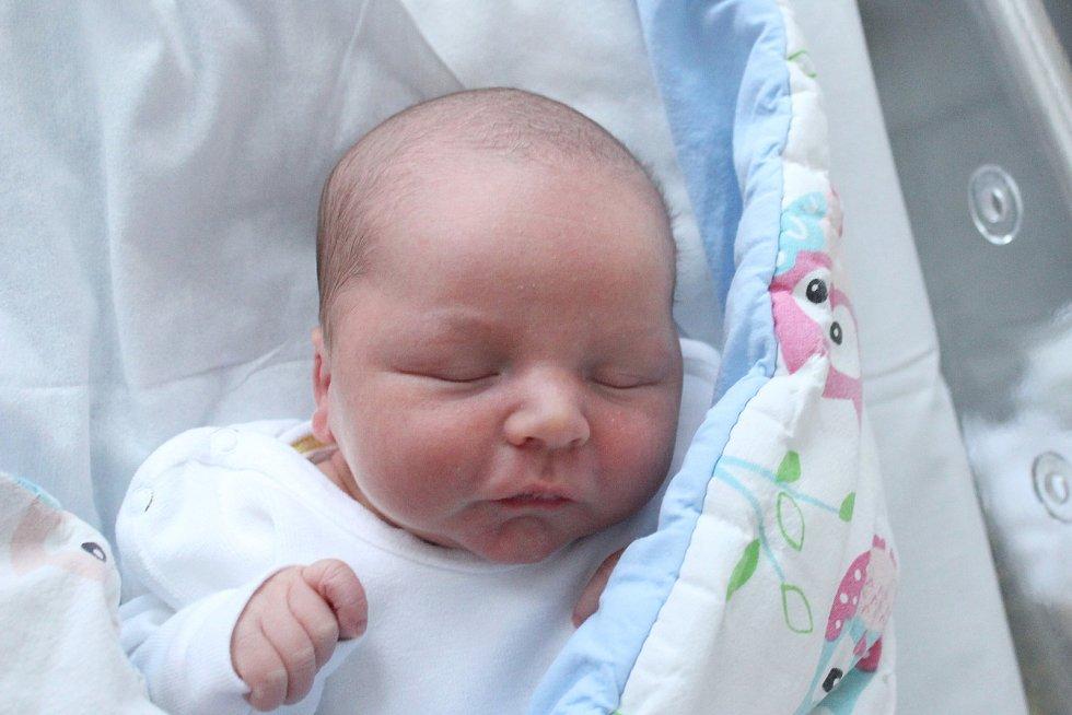 Rodičům Andree Novotné a Danielu Kornovi z Veliké u Kravař v Čechách se ve čtvrtek 12. prosince v 0:42 hodin narodil syn Venoušek Korn. Měřil 48 cm a vážil 3,31 kg.