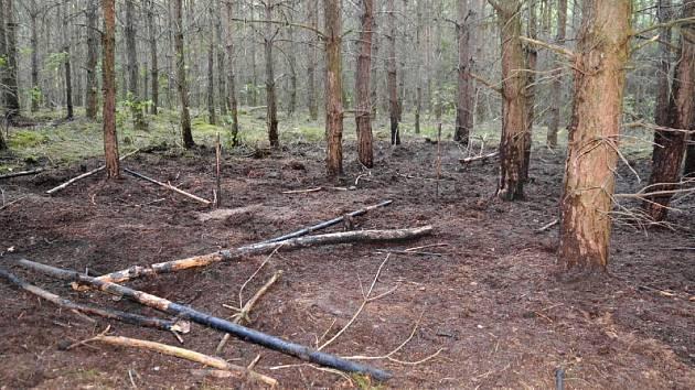 Celkem devět požárů založil úmyslně 23letý mladík.