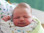 Rodičům Petře Kalousové a Zbyňku Háskovi z České Lípy se v neděli 13. května v 8:53 hodin narodil syn Maxim Hásek. Měřil 45 cm a vážil 2,80 kg.