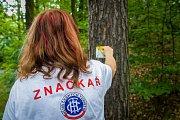 Jana Czuchová, členka klubu českých turistů provádí značení turistické trasy ve Sloupu v Čechách na Českolipsku. Snímek je z 5. července.