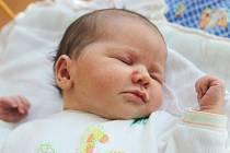 Mamince Tereze Noskové z České Lípy se v úterý 15. července v 8:20 hodin narodila dcera Amelie Jůnová. Měřila 51 cm a vážila 3,56 kg.