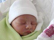 Rodičům Štěpánce Benešové a Petru Hynkovi z Kamenického Šenova se ve středu 13. prosince v 17:08 hodin narodila dcera Magdalena Hynková. Měřila 50 cm a vážila 3,36 kg.