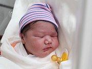 Rodičům Petře Červeňákové a Petru Samkovi z Doks se ve středu 31. října ve 4:40 hodin narodila dcera Sofie Červeňáková. Měřila 48 cm a vážila 3,30 kg.
