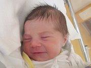 Mamince Janě Bajákové z České Lípy se ve středu 14. března v liberecké porodnici narodila dcera Adina Ježková. Měřila 50 cm a vážila 3,36 kg.