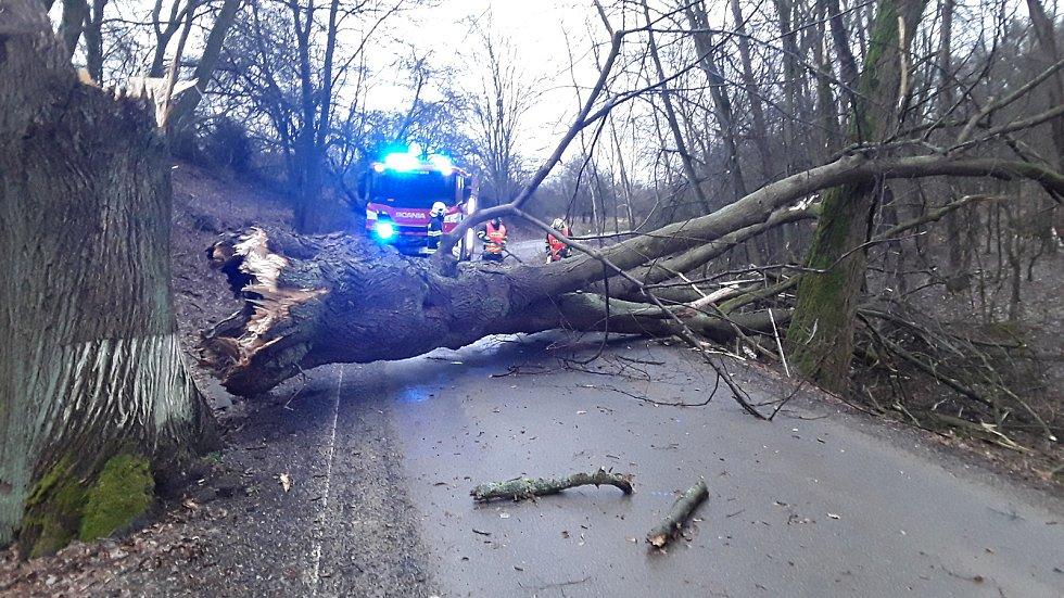 Silný vítr v Libereckém kraji láme stromy. Hasiči vyjeli k dvacítce událostí.