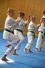Karate klub Sport Relax v České Lípě měl soustředění v Chřibské.