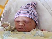 Rodičům Veronice a Jindřichovi Borčovým z České Lípy se v pátek 13. října ve 2:03 hodin narodila Viktorie Borčová. Měřila 47 cm a vážila 2,70 kg.