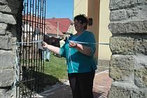 Díky grantu obnovila v roce 2011 alej například obec Kvítkov na Českolipsku.