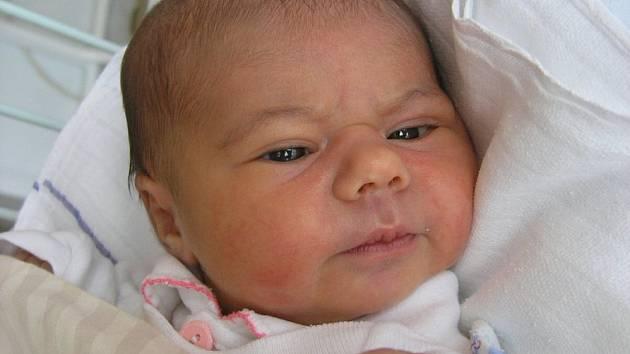 Mamince Aleně Suchánkové z České Lípy se 26. listopadu v 19:36 hodin narodila dcera Barbora Suchánková. Měřila 50 cm a vážila 3,05 kg.