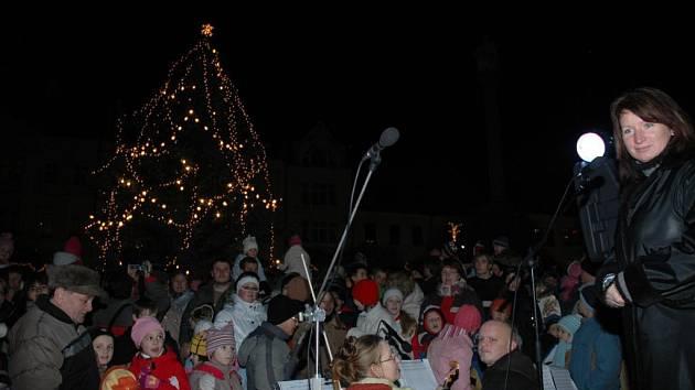 Vánoční strom v České Lípě