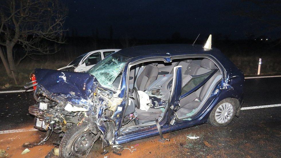 Daněk na silnici ohrozil životy.