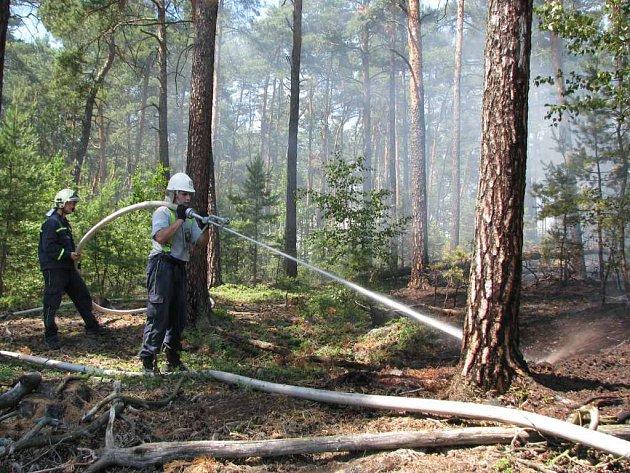 Hasiči bojovali s požárem lesa v Okřešicích