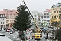Vánoční strom pro Českou Lípu