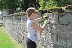 Celkem třináct dobrovolníků z celého světa přijelo už potřetí do Skalky u Doks. Pomohli třeba s přípravou Svatojakubské mše v Bořejově. Jejich motivací je pomáhat ostatním a poznat novou kulturu.