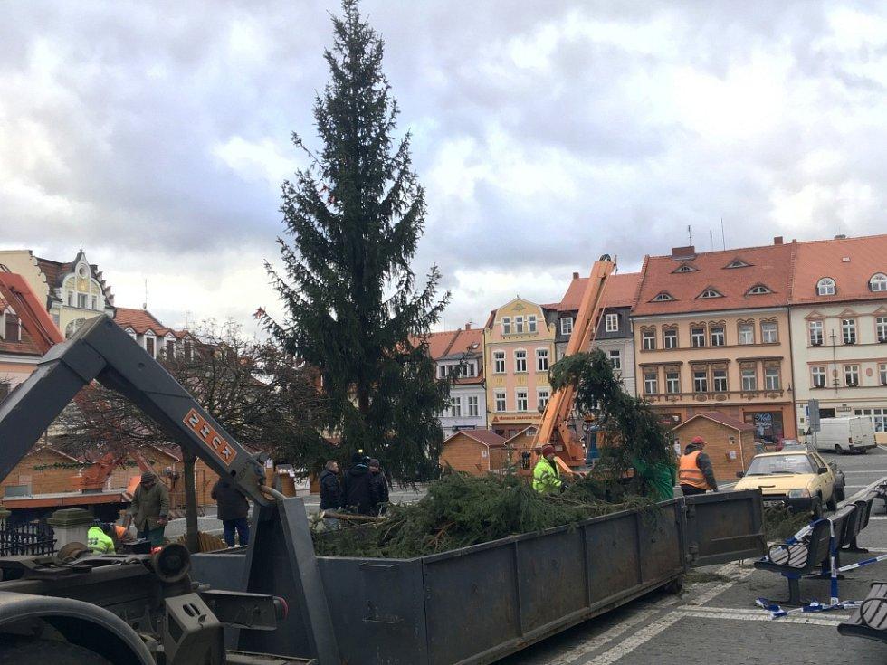 Strom je zpět na svém místě, i když v kratší verzi.